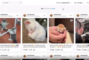Virol, Membantu Tingkatkan Follower Akun Instagram dengan Mudah